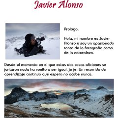 Javier Alonso Torres