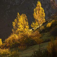 Primeras luces de otoño