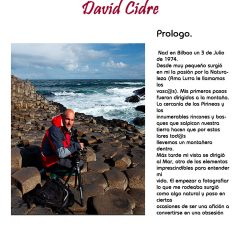 David Cidre