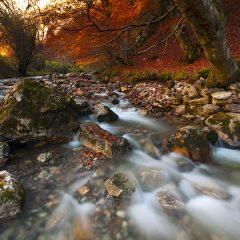 otoño leonés – FOTO DESTACADA