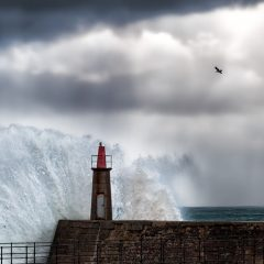 Dialogos en la tempestad