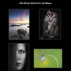 10 de mayo: Visita guiada a la exposición Exodos I Hospital Valle del Nalón.