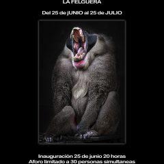 Exposición Exodos III: vuelta a la nueva normalidad 2 de Julio