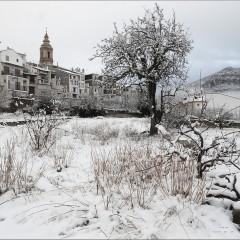 Bajo un manto blanco – FOTO DESTACADA