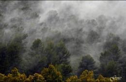 Por los montes de Málaga
