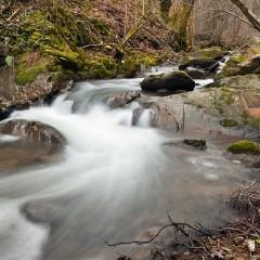 Curso de fotografía digital: Montaña y naturaleza