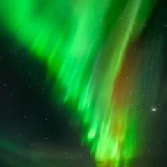 Magical Lights – FOTO DESTACADA