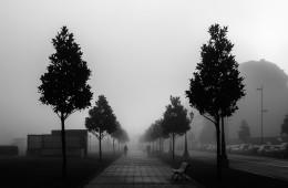 Niebla en la ciudad I.